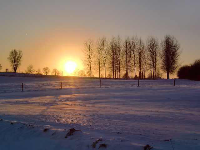 Horrues en hiver 17
