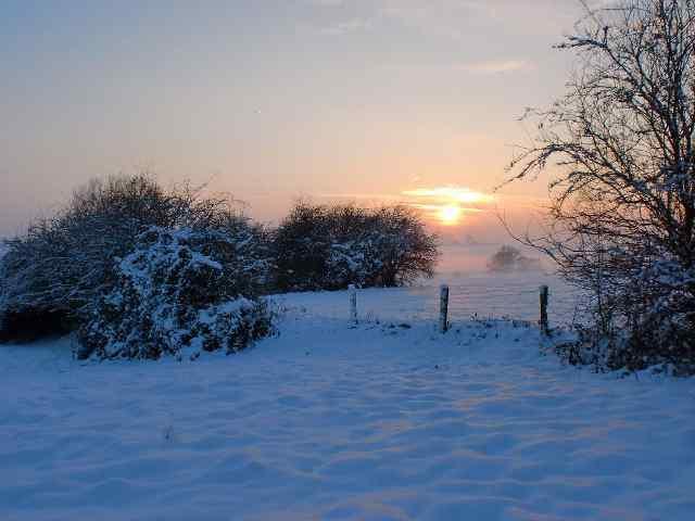 Horrues en hiver 2