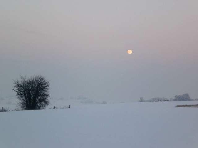 Horrues en hiver 3