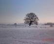 Horrues en hiver 4