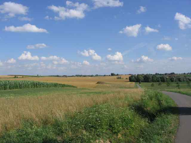 Horrues en été 11